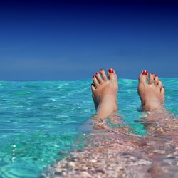Image for Polish - Holiday Feet